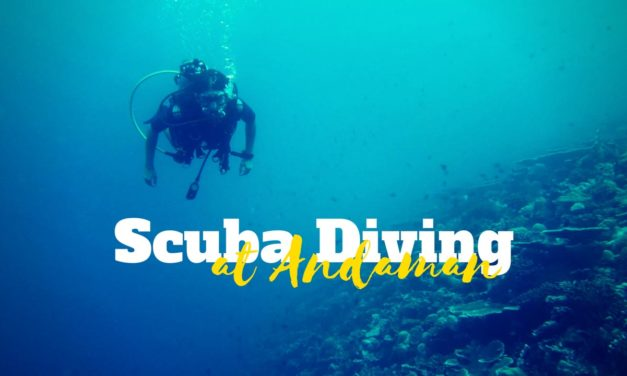 Let the sea set you free – Scuba Diving at Andamans