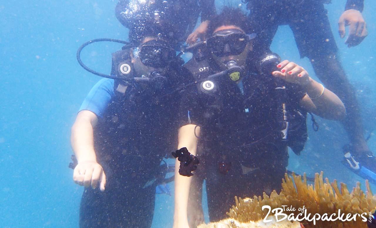 Scuba-Diving-Andamans