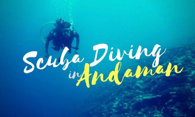 Scuba Diving Andamans – Let the sea set you free