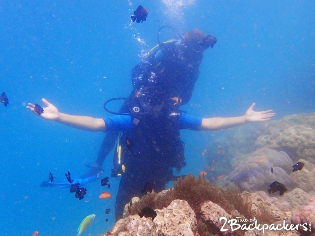 scuba diving experience in Andaman