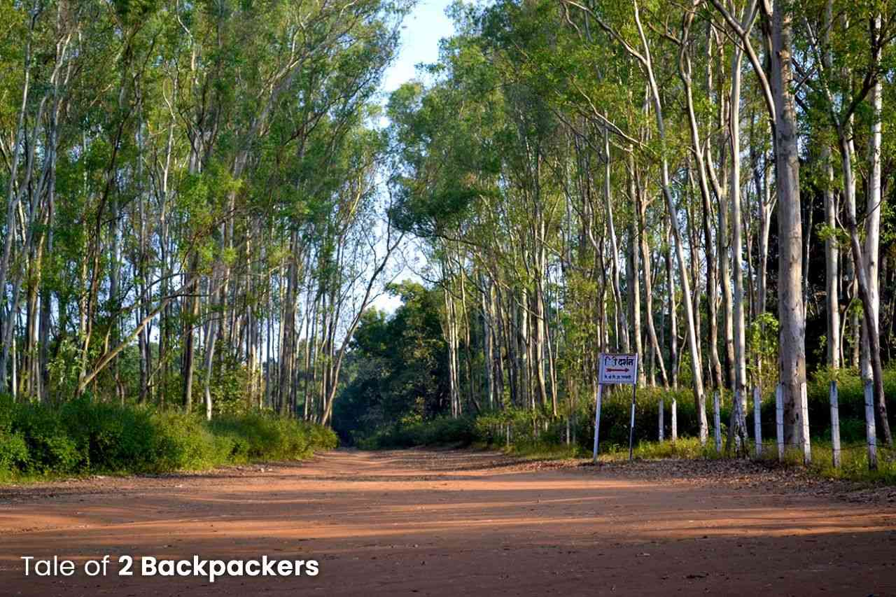 Way to Priyadarshini Point Pachmarhi, Queen of Satpura