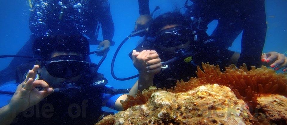 scuba diving at Andamans