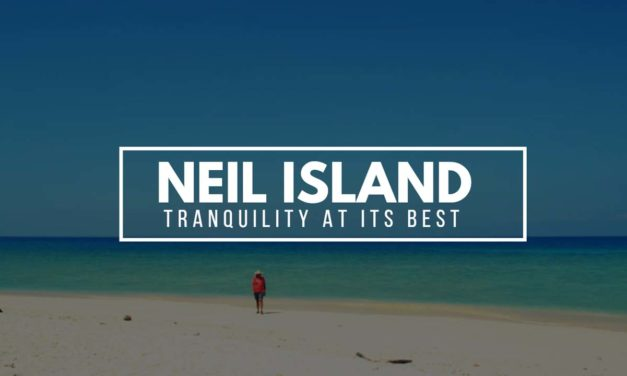 The Ultimate Honeymoon Travel Guide to Neil Island (Shaheed Dweep)