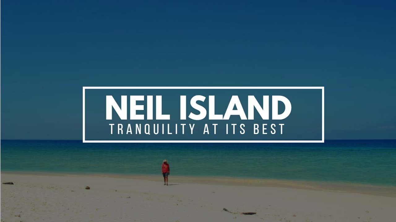 The Ultimate Honeymoon Travel Guide to Neil Island (Shaheed Dweep)