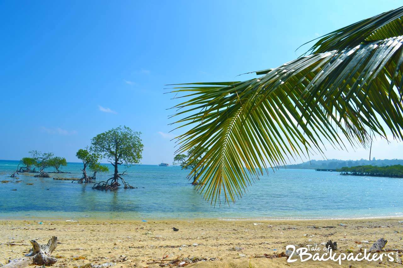 Things to do at Neil Island (Shaheed Dweep) Andaman