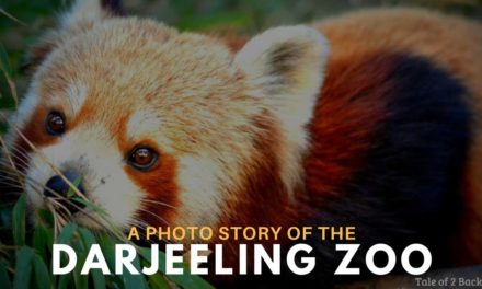 A Photo story of the Darjeeling Zoo