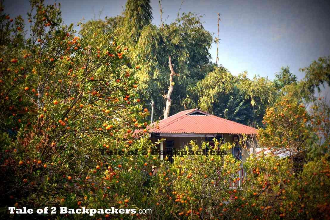 Sitong - weekend getaway from Kolkata