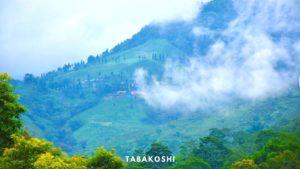 Tabakoshi