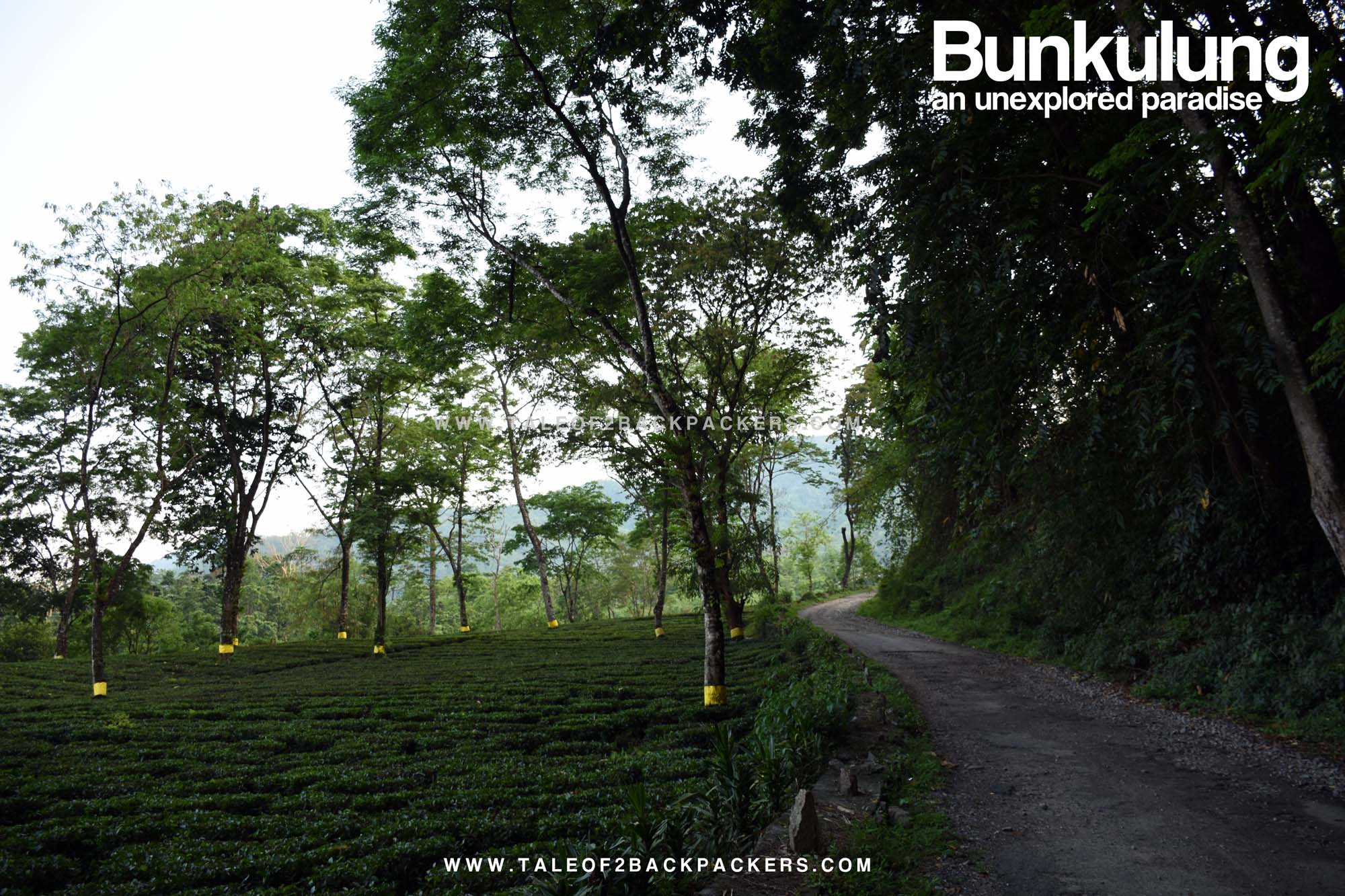 Weekend destinations from Kolkata