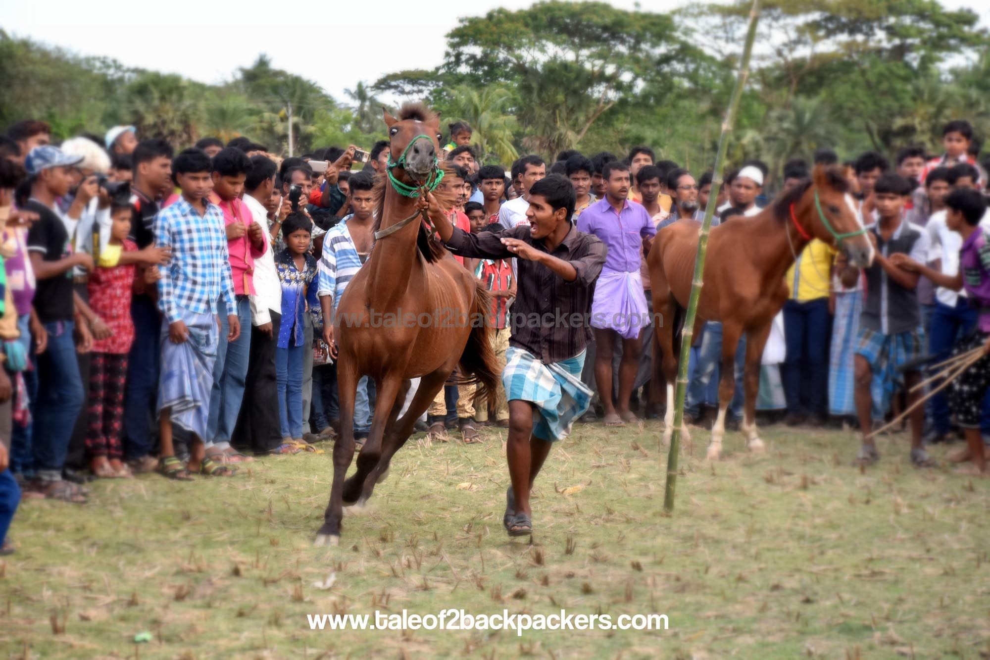 Horse Race at Jatar Deul