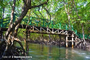 Baratang Island_Andaman