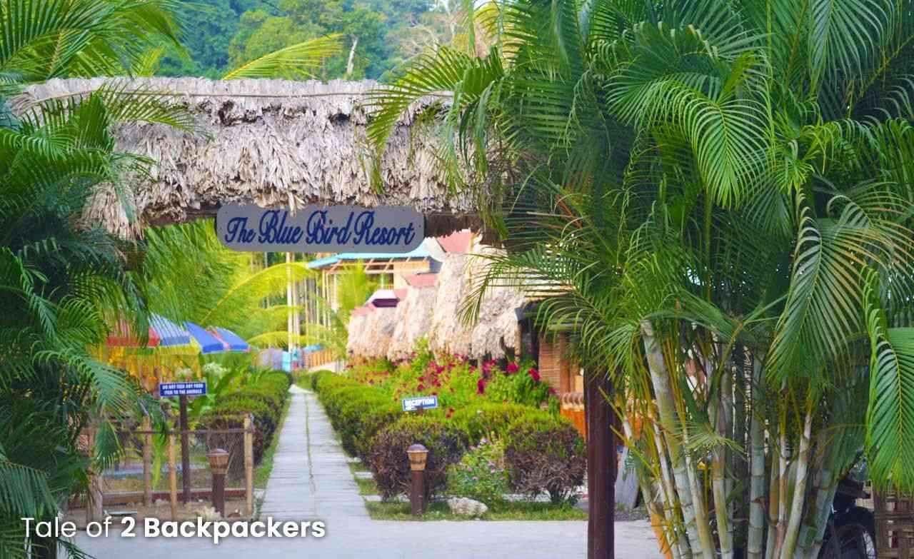 Places to stay in Havelock_Andaman