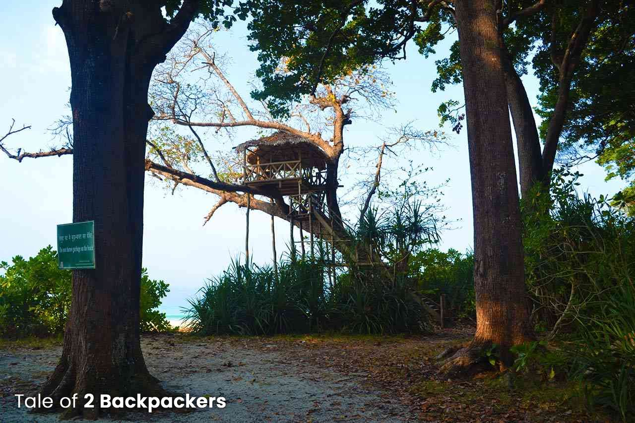 Tree house at Radhanagar Beach - places to visit in Havelock Island - Andaman