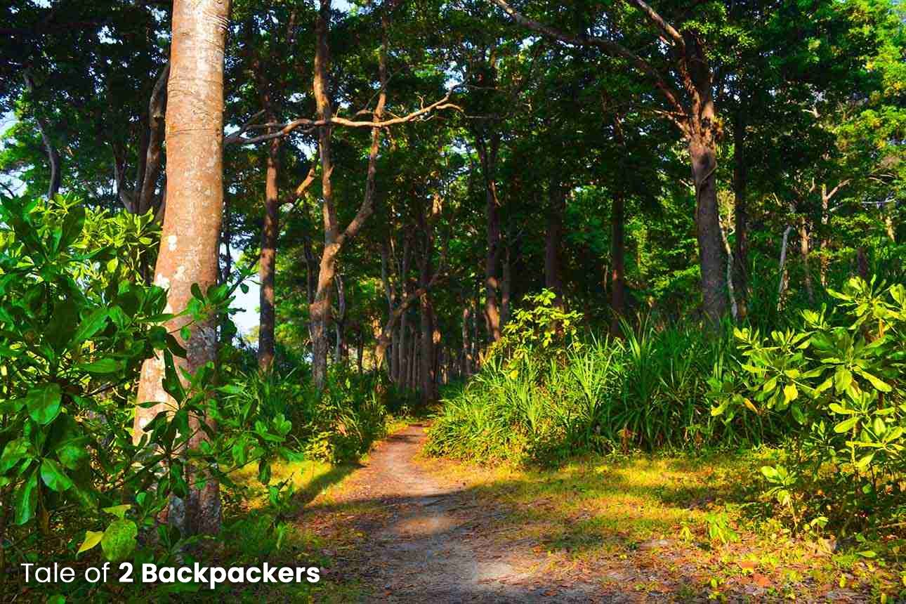 Trek route to Elephanta Beach - Havelock Island