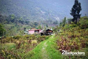 Fairytale like village of Tingvong in Upper Dzongu