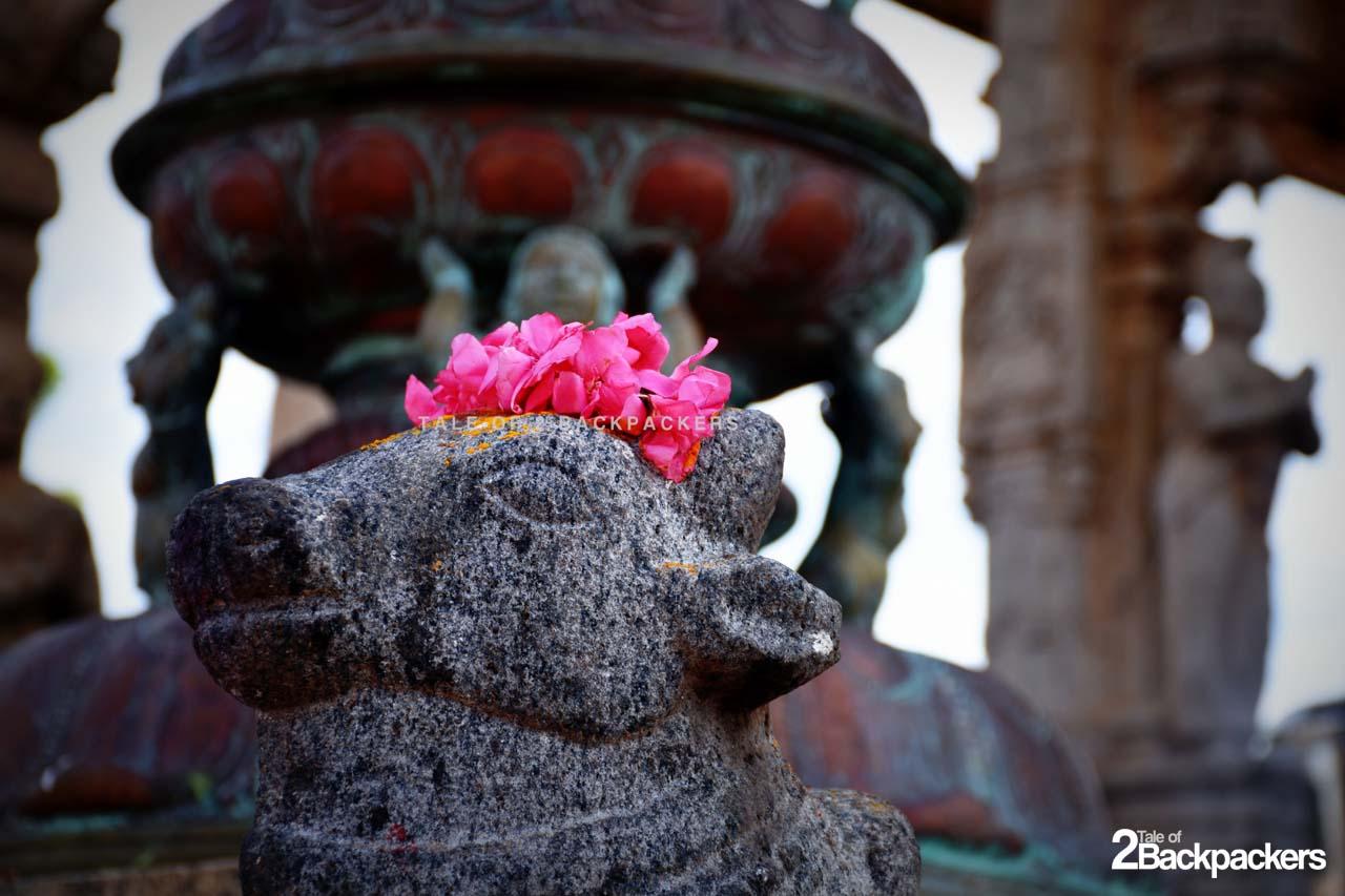 Idol of Nandi at Brihadeshwara Temple of Tanjore