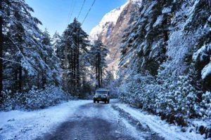 Snow covered Yumthang Valley