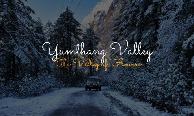 Yumthang Valley – The Valley of Flowers