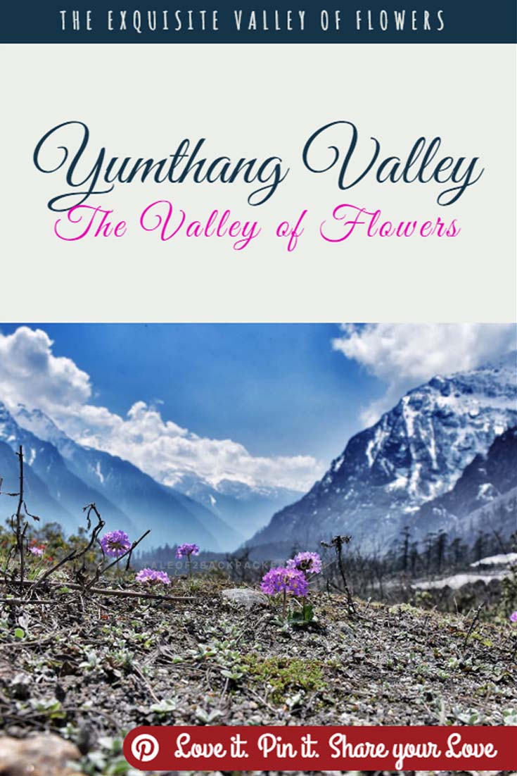 Yumthang Valley Sikkim - The Valley of Flowers (Pinterest)