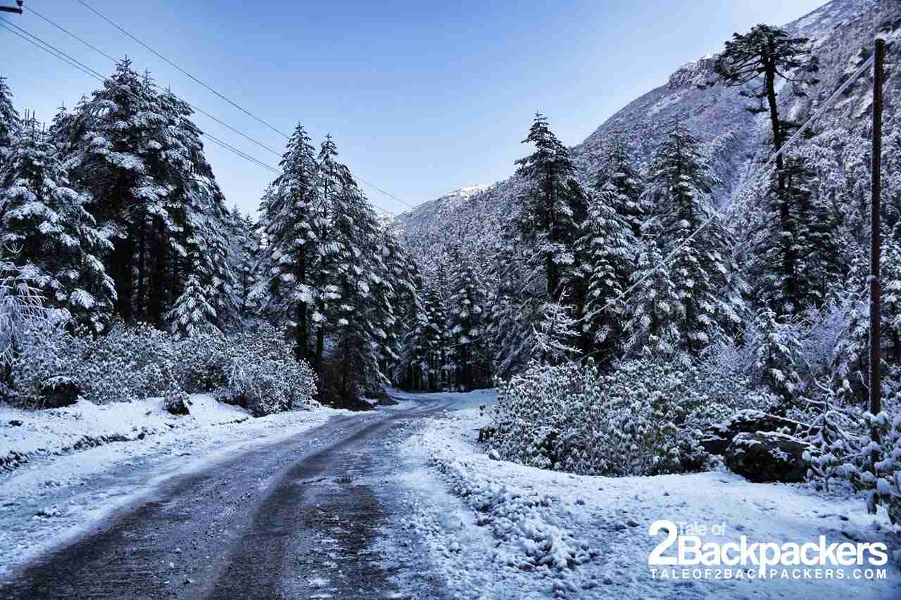 Valley of Flowers in Sikkim completely covered in snow