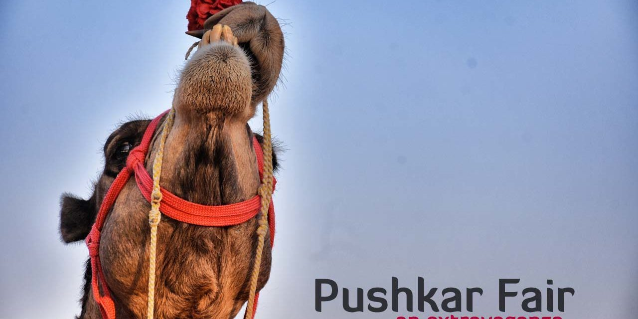 Pushkar Fair – An extravaganza