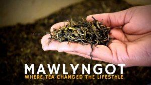 Mawlyngot Shillong Meghalaya Tourism