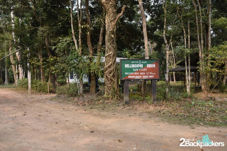 hoollongapar gibbon sanctuary Jorhat Assam