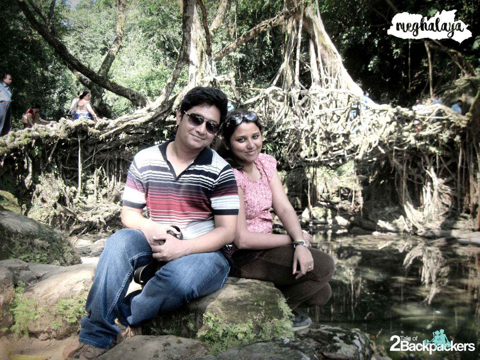 Living Root Bridge, Meghalaya Travel Guide