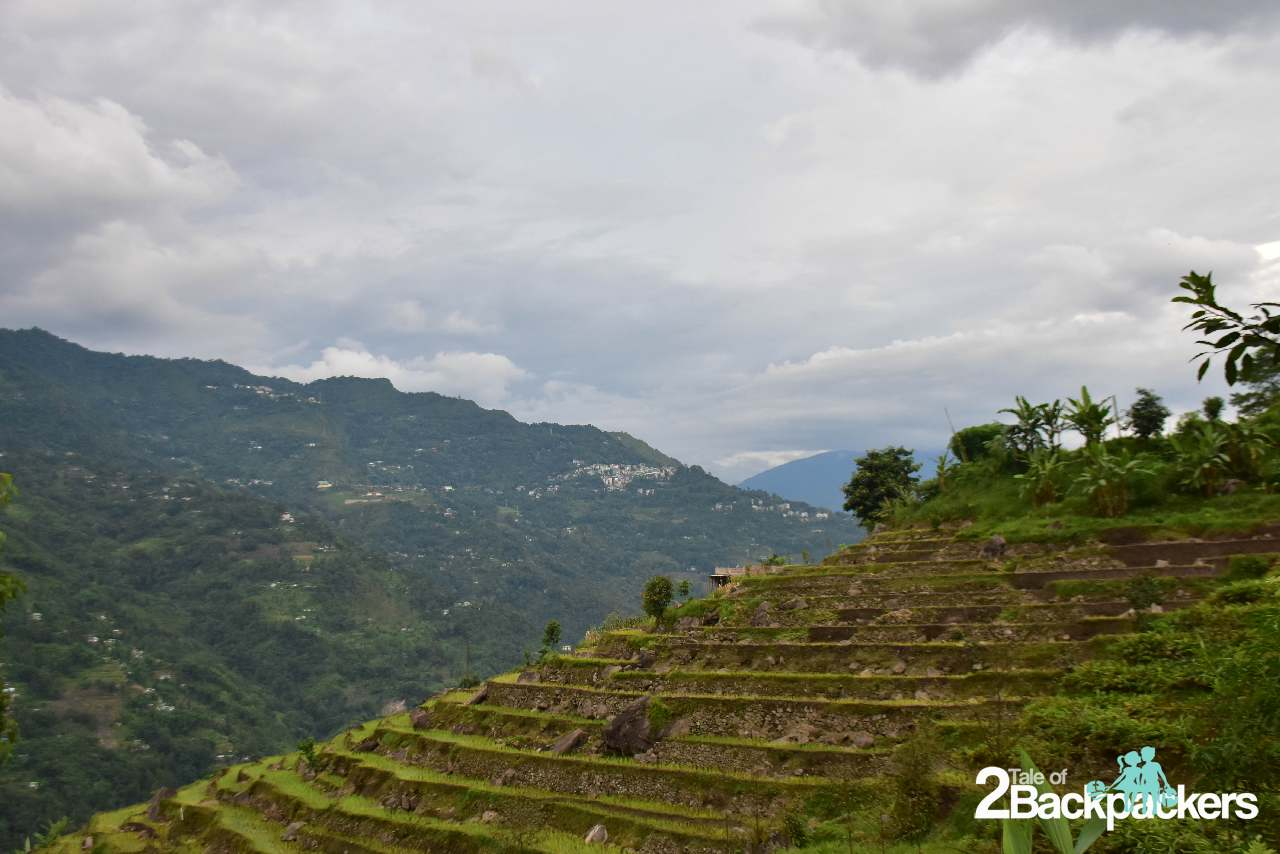 Terraced fields at villages in West Sikkim