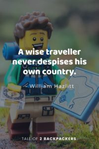Short travel quotes - A wise traveller never despises his own country