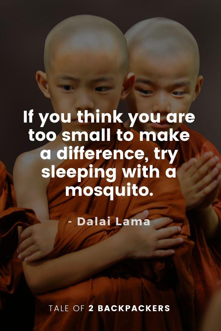 Dalai Lama Quotes on Motivation