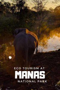 Manas ecotourism Bodoland