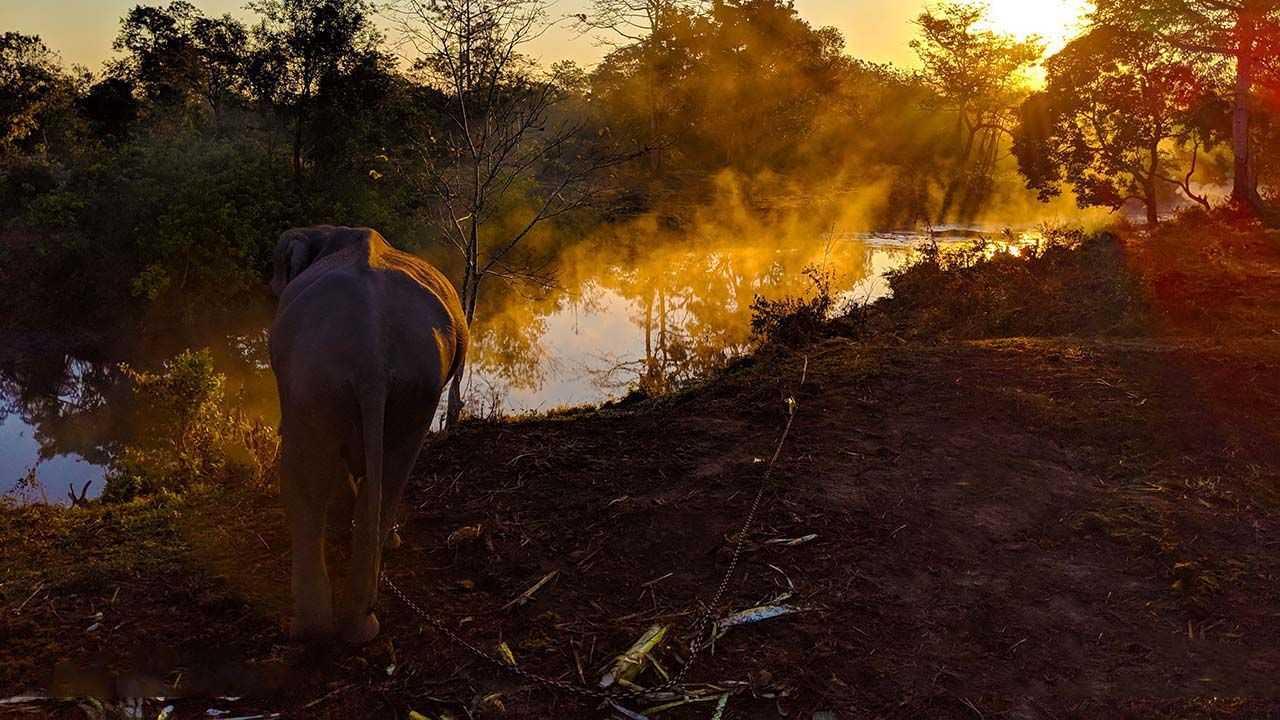 Manas Maozigendri Ecotourism society