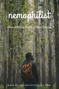 travel words with beautiful meanings-nemophilist