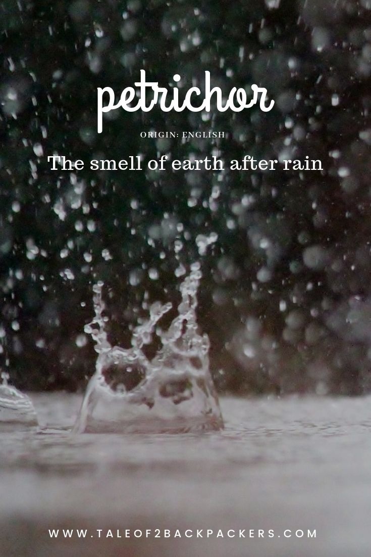 travel words with beautiful meaning -petrichor-domain-name-ideas
