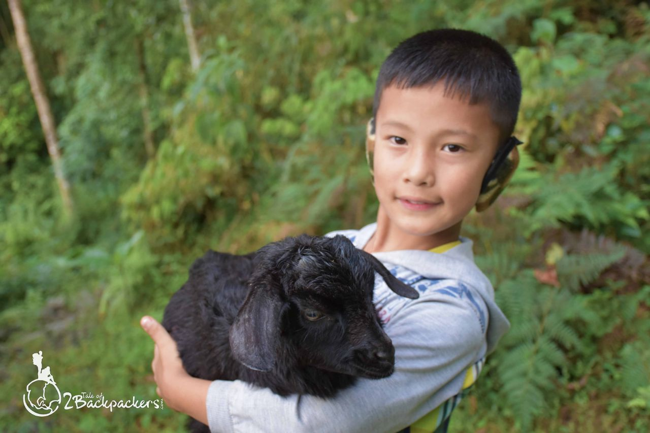 A little child holding a goat