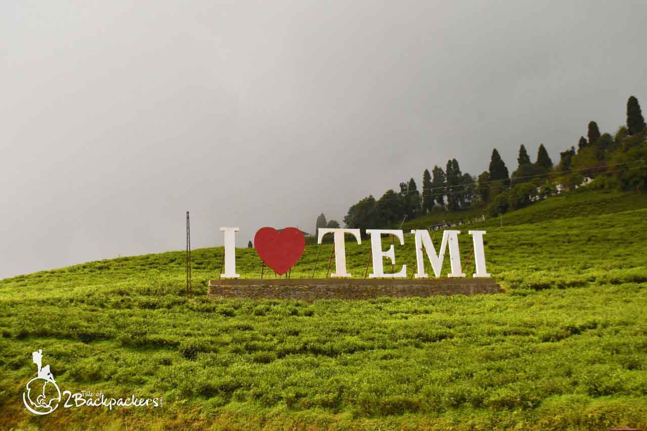 Temi Tea Gardens, offbeat weekend destinations from Kolkata