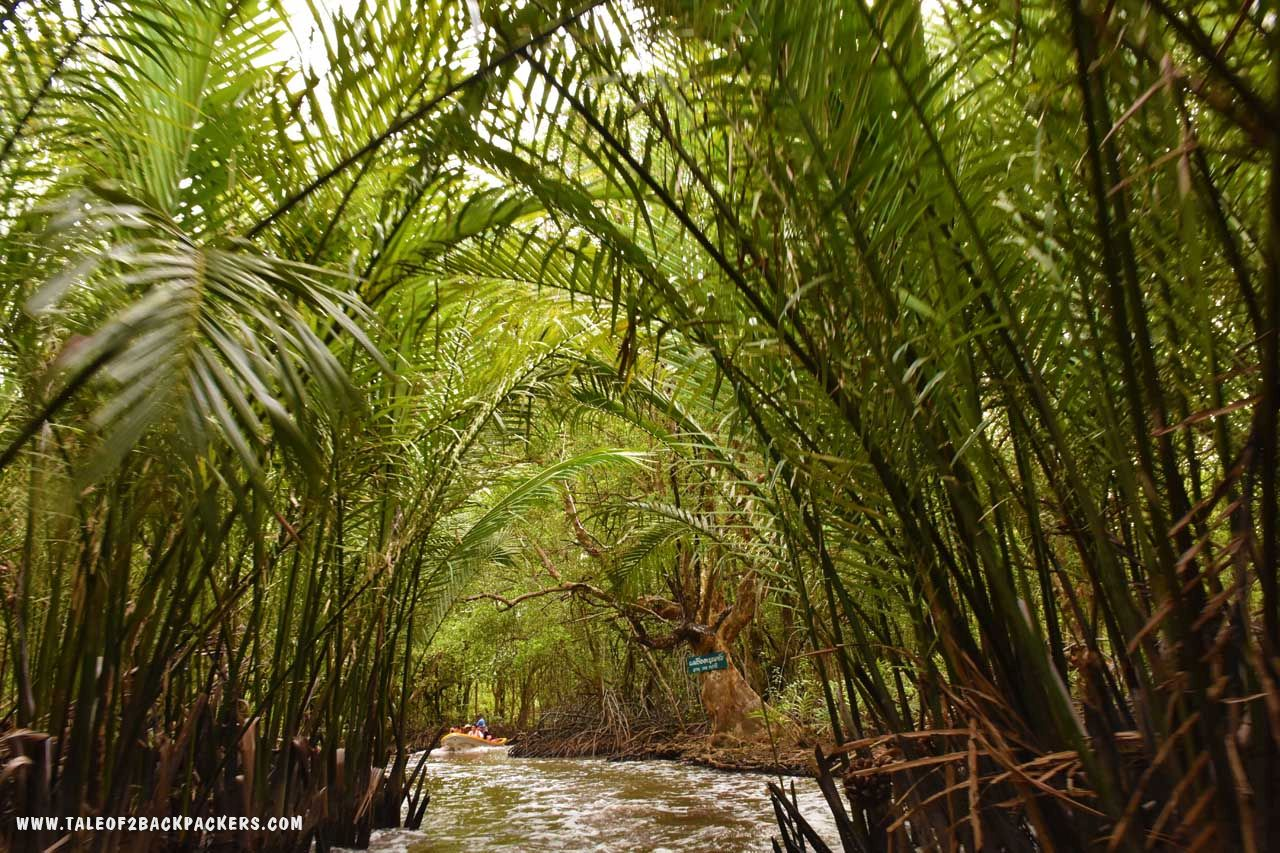boat ride through the mangroves in Trat