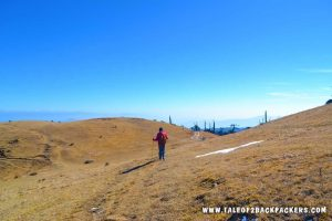 sandakphu trek guide