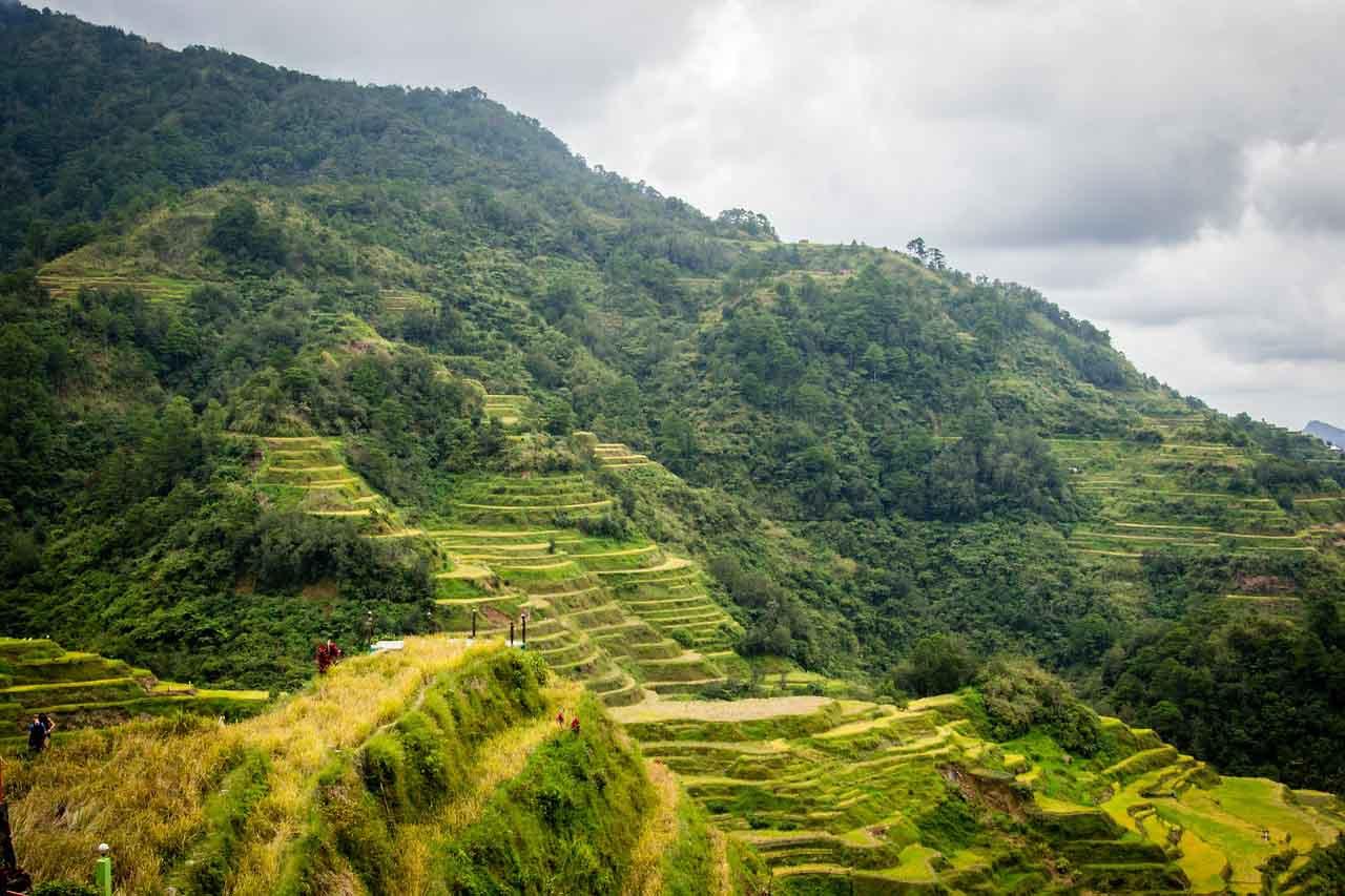 Banaue Rice Terraces, Ifugao