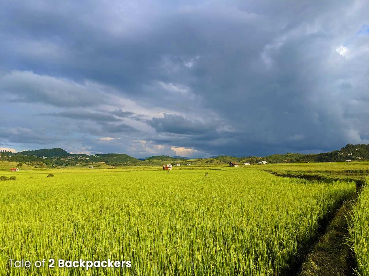 Rice fields at Champhai, Mizoram tourism