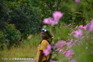 At Ruantlang Park Mizoram
