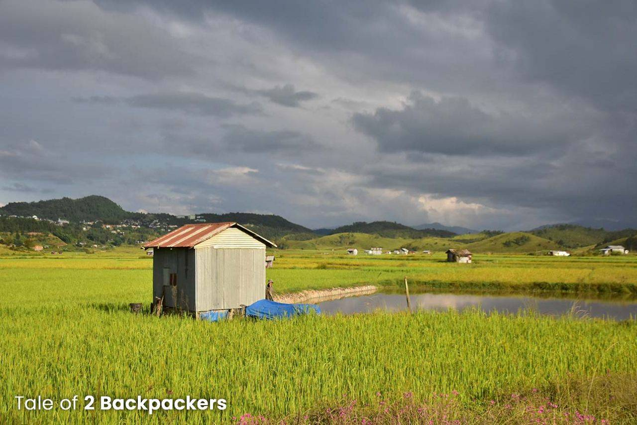 House in a paddy field in Champhai