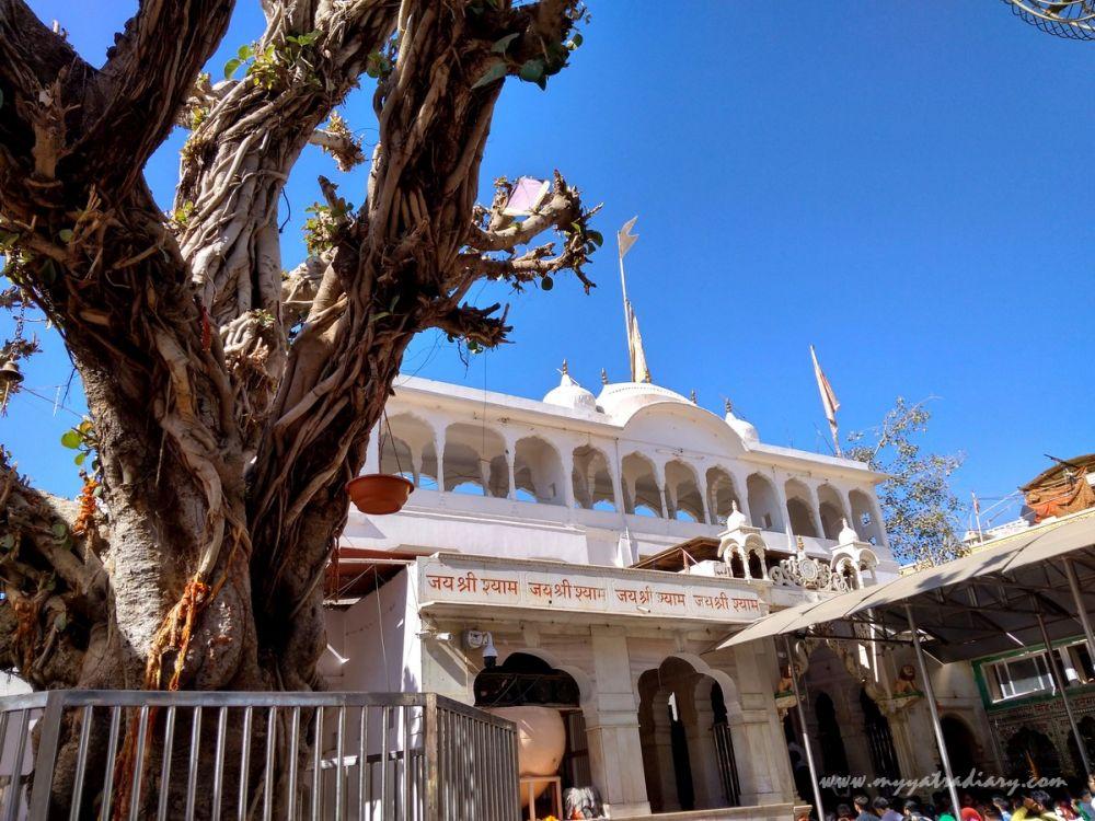 Temples in North India - Khatu Shyamji Temple, Rajasthan