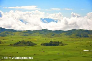 Paddy fields in Champhai - rice bowl of Mizoram