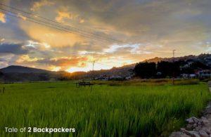 Paddy fields of Champhai Mizoram
