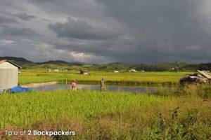 Rice fields at Champhai - Mizoram tourism