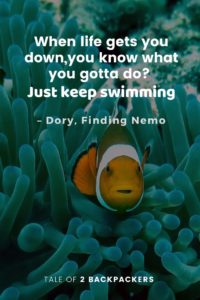 Adventure Quotes from Movies - Finding Nemo
