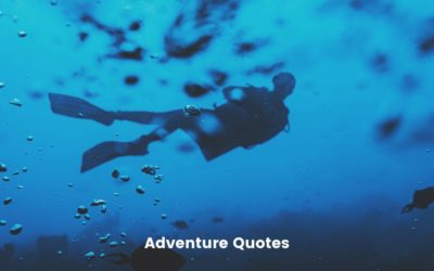 200 Best Adventure Quotes and Sayings – Old, New & From Movies