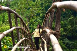 Bamboo Bridge at Bambo Trail Meghalaya